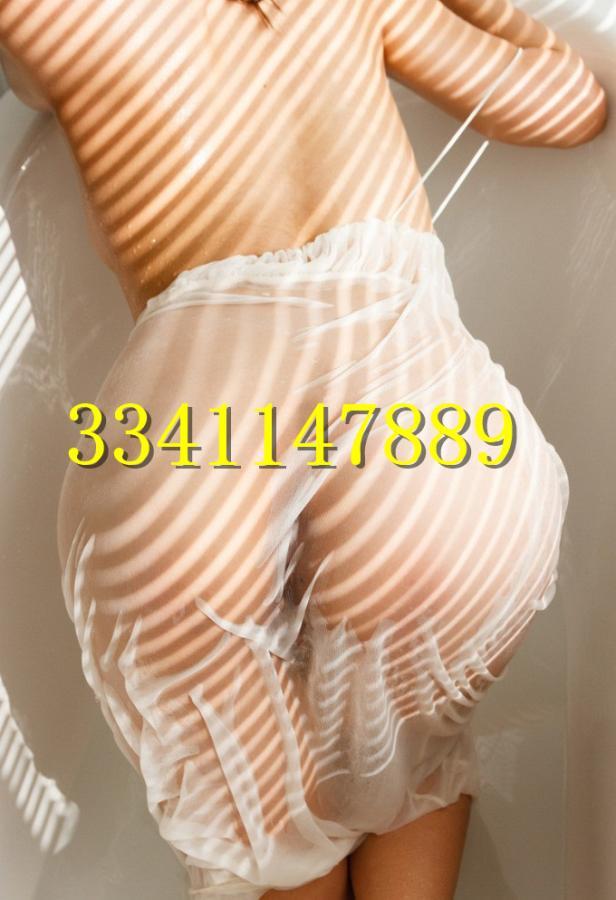 3341147889-289.jpg