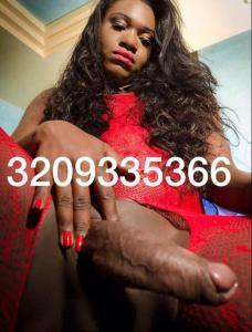 3209335366-4.jpg