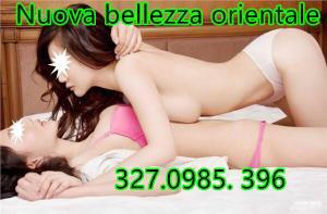 323366536-560.jpg