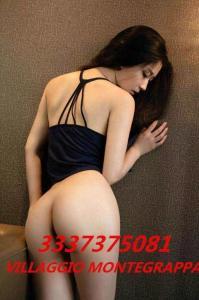 3337375081-3.jpg