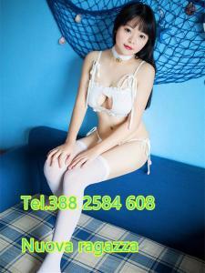 333771798-309.jpg