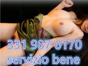 333825741-343.jpg