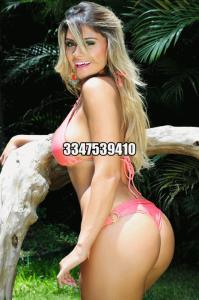 3347539410-782.jpg