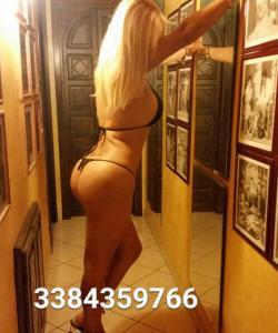 3384359766-527.jpg