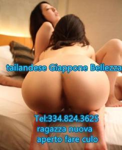 351244180-477.jpg