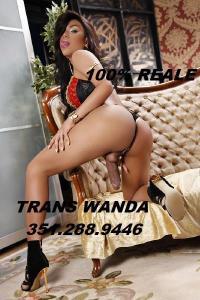 3512889446-126.jpg