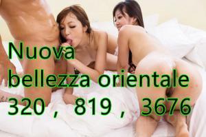 371839885-530.jpg