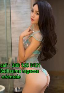 377524276-753.jpg