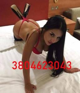 3804623043-481.jpg