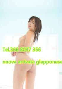 388436084-803.jpg