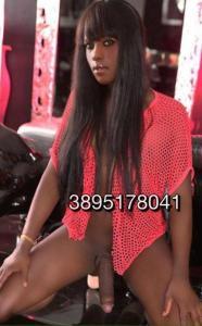 3895178041-482.jpg
